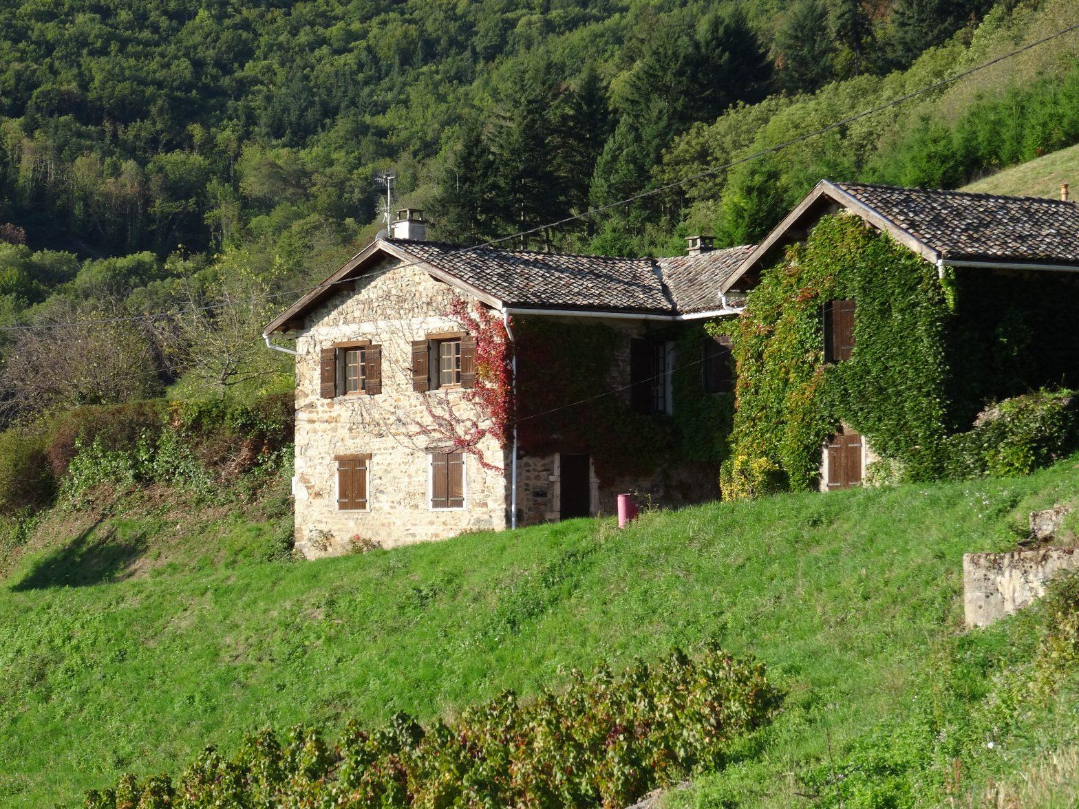Belles demeures à vendre de 0.46 HA - beaujolais