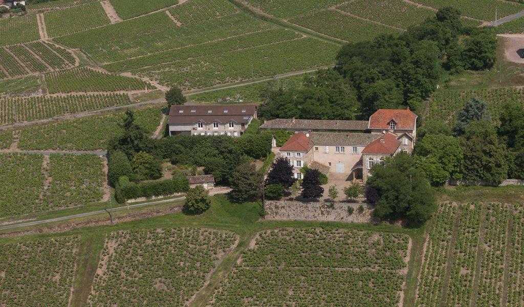 Belles demeures à vendre de 0.84 HA - beaujolais