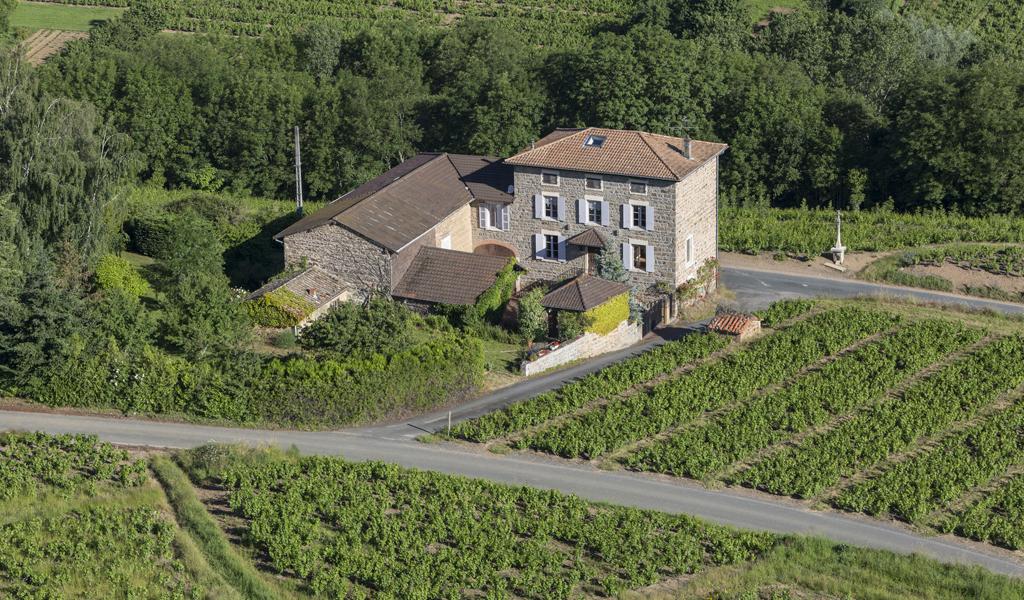 Prestige Properties to sell of 0.3 HA - beaujolais-en