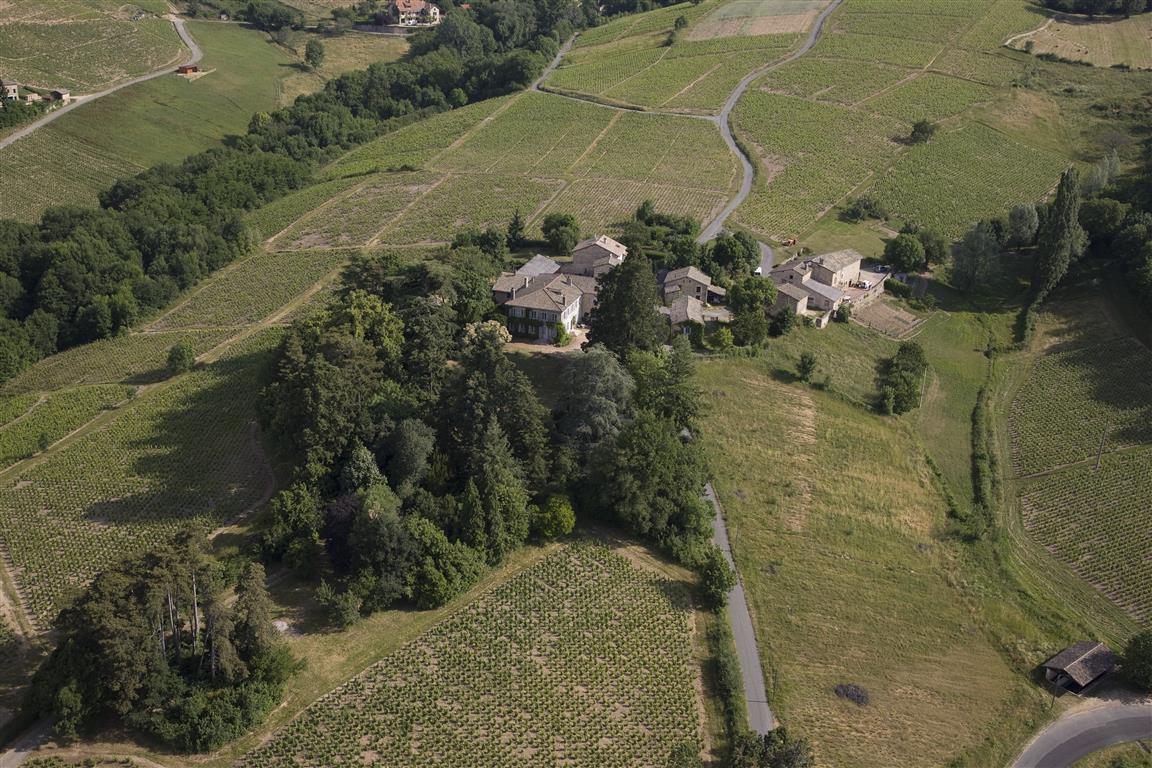 Propriété viticole à vendre de 10 HA - beaujolais