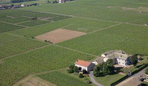 Propriété viticole à vendre de 12 HA - beaujolais