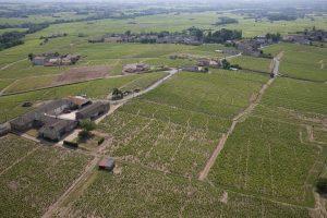 Propriété viticole à vendre de 14 HA - beaujolais