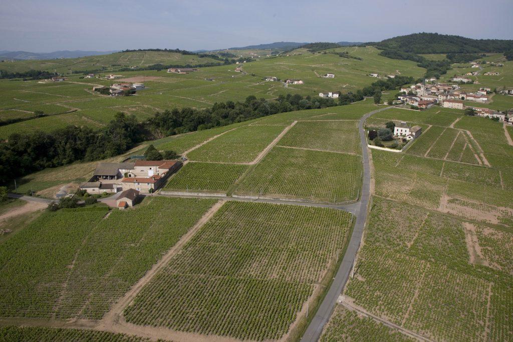 Propriété viticole à vendre de 20 HA - beaujolais