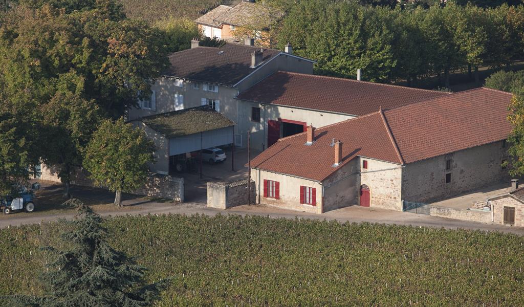 Propriété viticole à vendre de 21.3 HA - bourgogne