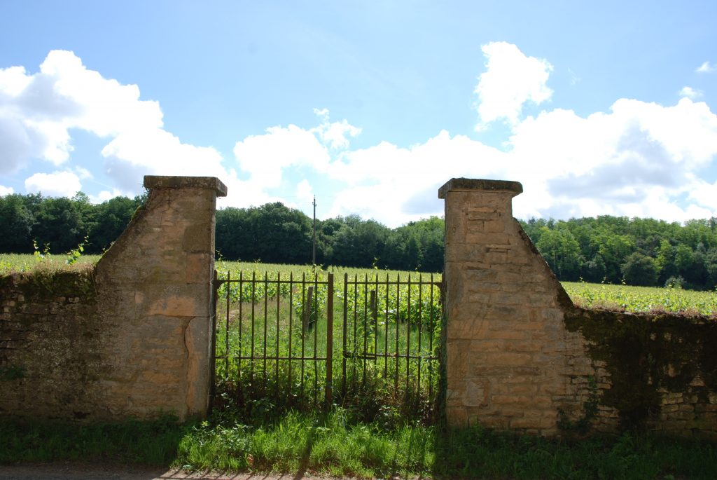 Propriété viticole à vendre de 27.64 HA - bourgogne