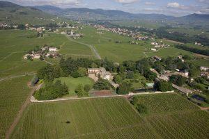 Propriété viticole à vendre de 37.73 HA - beaujolais