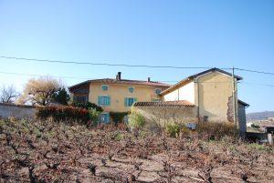 Propriété viticole à vendre de 6 HA - beaujolais