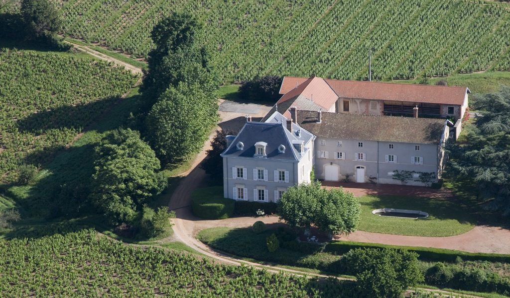 Propriété viticole à vendre de 8.86 HA - beaujolais