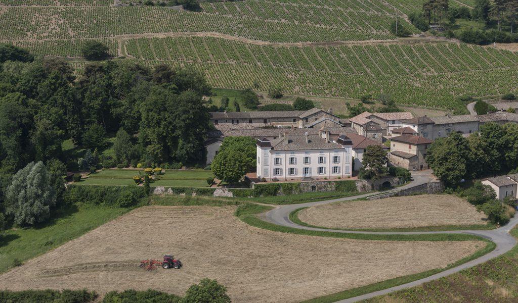 Propriété viticole à vendre de 9.78 HA - beaujolais