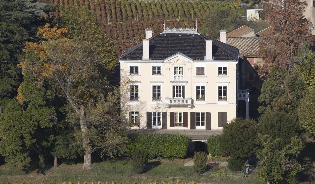 Wine Estates to sell of 13 HA - beaujolais-en
