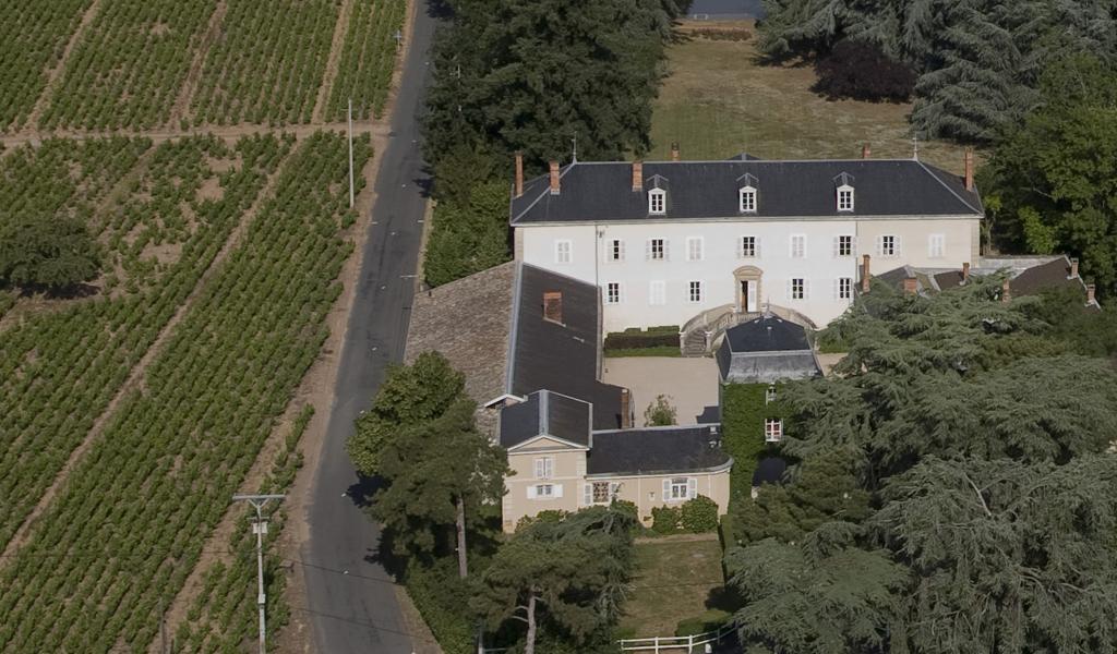 Wine Estates to sell of 20 HA - beaujolais-en
