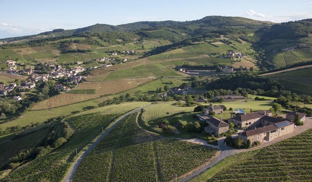 Wine Estates to sell of 9.5 HA - beaujolais-en