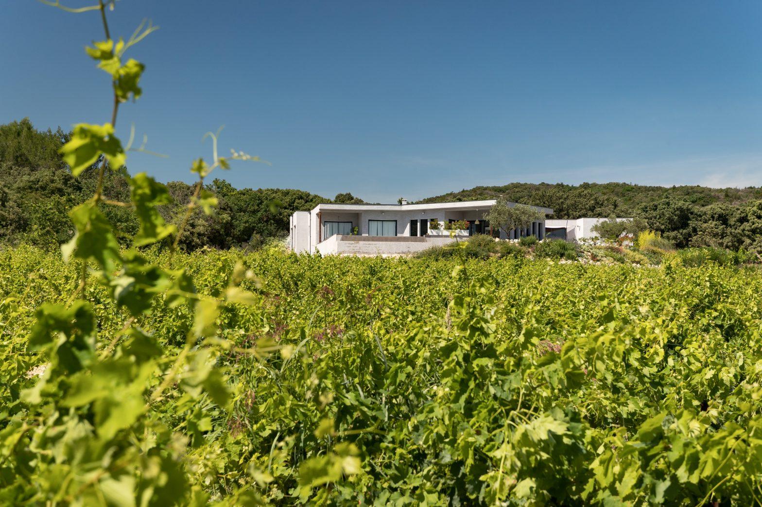Propriété viticole à vendre de 10 HA - Vallée du Rhone - 1952CDR - fr