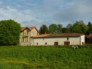 Propriété viticole à vendre de 13 HA - Cognac - 14068 - fr