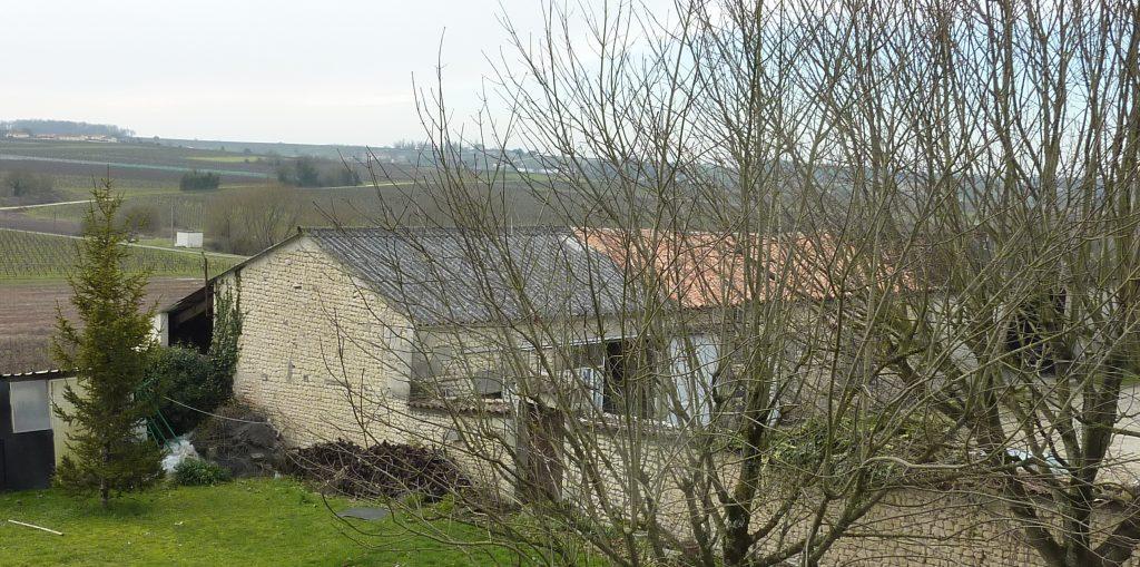 Propriété viticole à vendre de 15 HA - Cognac - 15022 - fr
