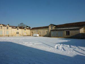 Propriété viticole à vendre de 17 HA - Cognac - 12027 - fr