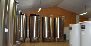 Propriété viticole à vendre de 17 HA - Loire - 18184 - fr
