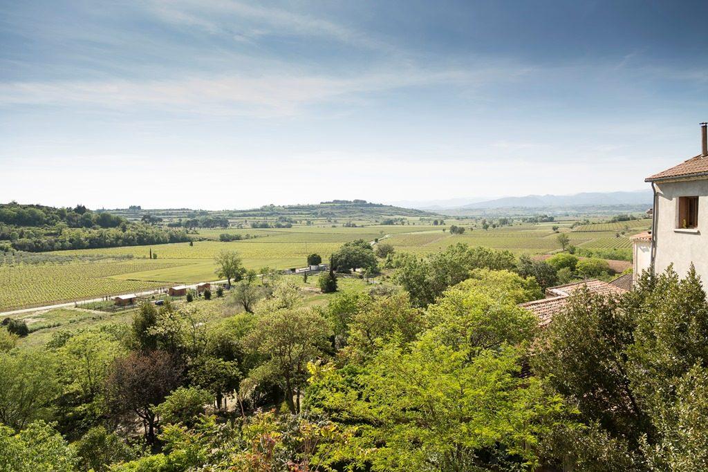Propriété viticole à vendre de 18 HA - Languedoc - 577BISLR - fr