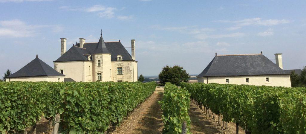 Propriété viticole à vendre de 2.3 HA - Loire - 9085 - fr