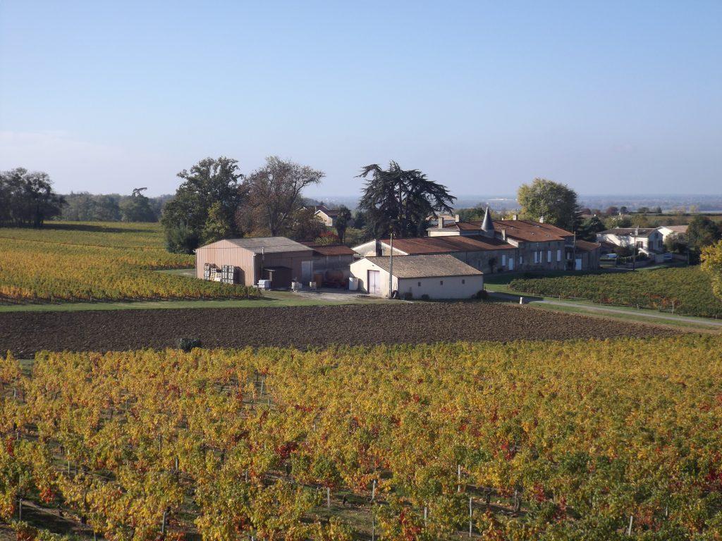 Propriété viticole à vendre de 20 HA - Bordeaux - 18043 - fr