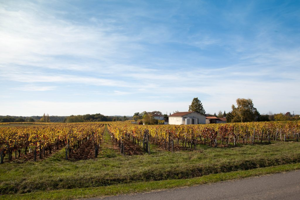 Propriété viticole à vendre de 20 HA - Bordeaux - 18237 - fr