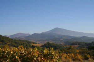 Propriété viticole à vendre de 22 HA - Vallée du Rhone - 1805CDR - fr