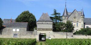 Propriété viticole à vendre de 23 HA - Loire - 16001 - fr