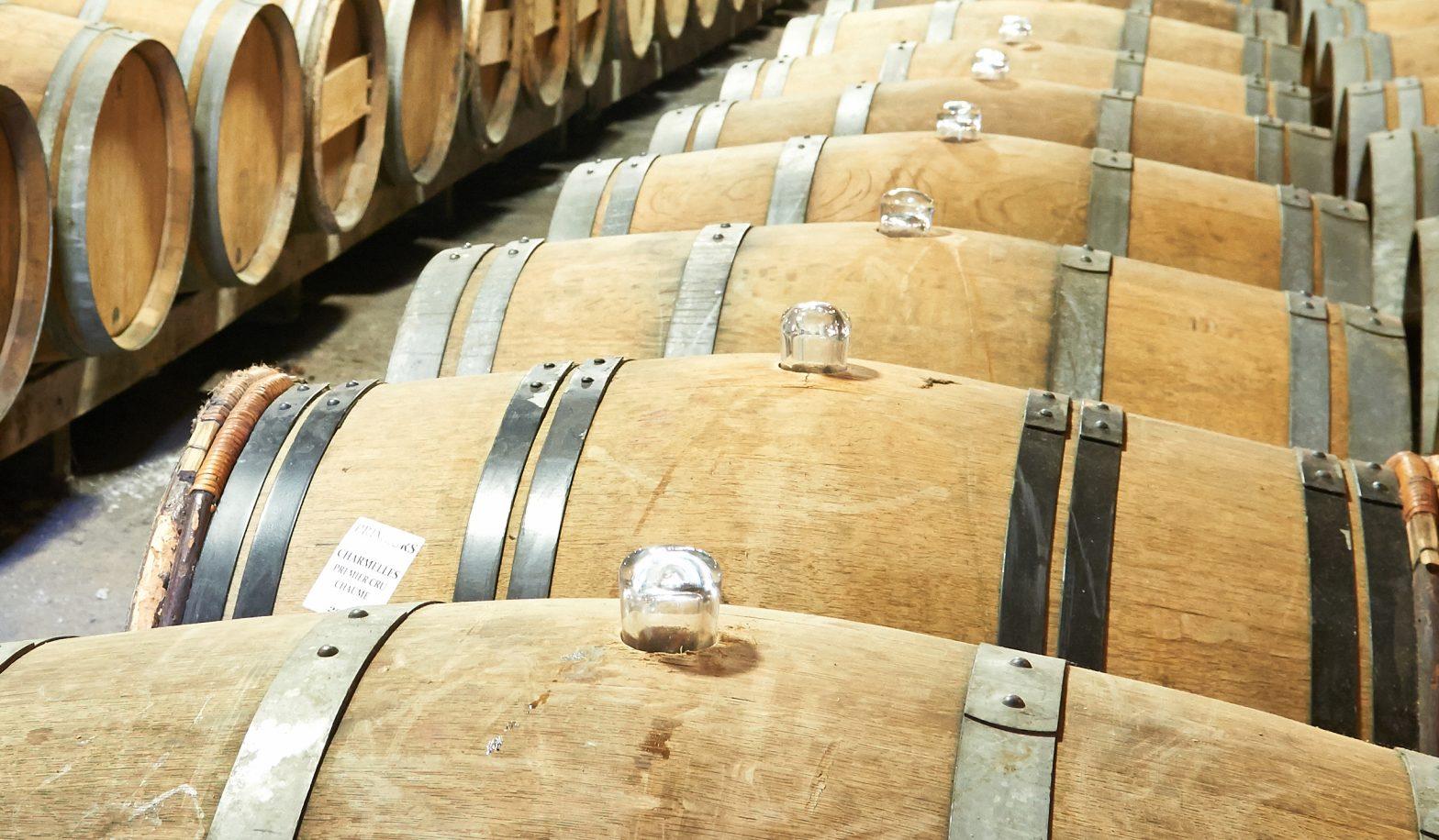 Propriété viticole à vendre de 23 HA - Loire - 17189 - fr