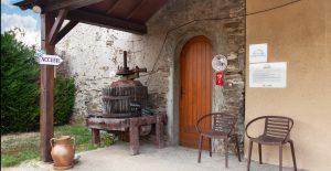 Propriété viticole à vendre de 28 HA - Loire - 18167 - fr