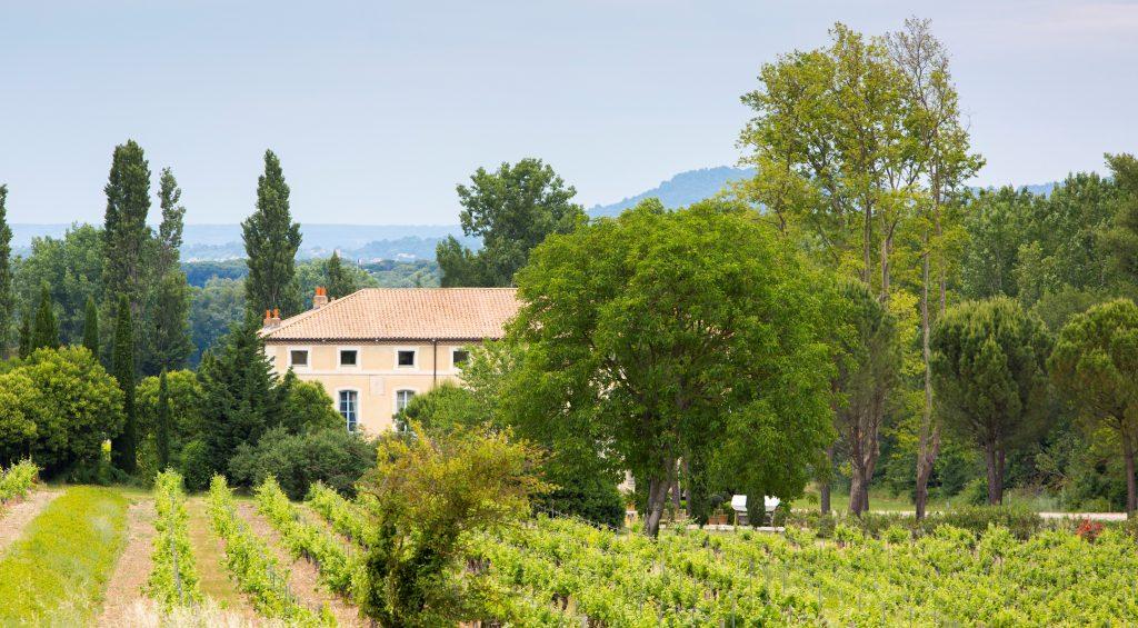 Propriété viticole à vendre de 29 HA - Vallée du Rhone - 190CDR  - fr