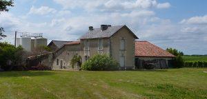 Propriété viticole à vendre de 33 HA - Cognac - 10133 - fr