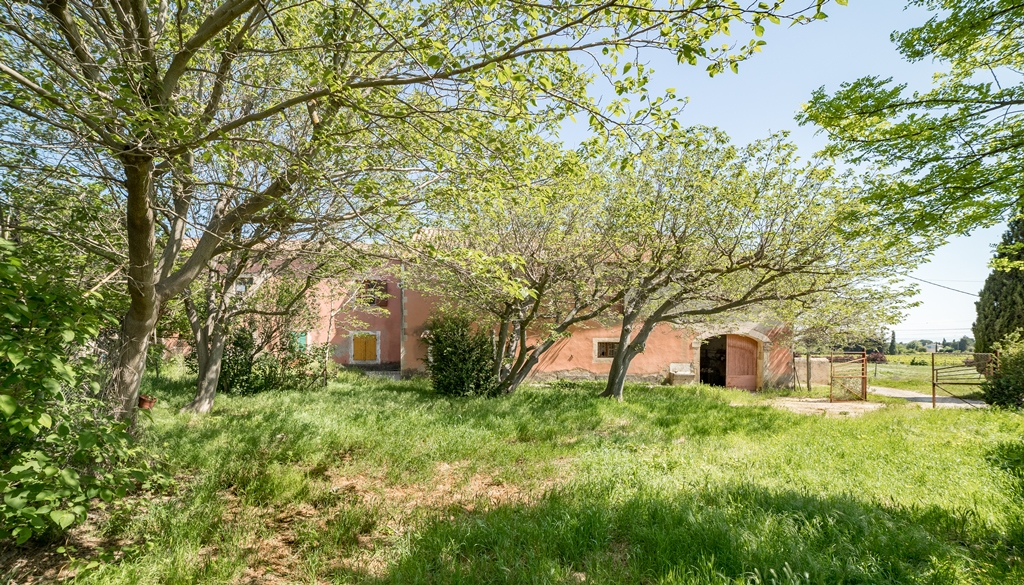 Propriété viticole à vendre de 35 HA - Languedoc - 1433CDR - fr