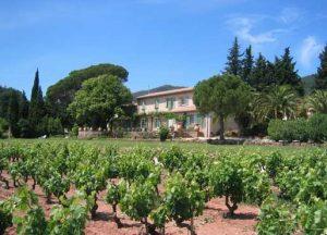 Propriété viticole à vendre de 39 HA - Provence - 395P - fr