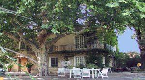Propriété viticole à vendre de 41 HA - Vallée du Rhone - 851CDR - fr