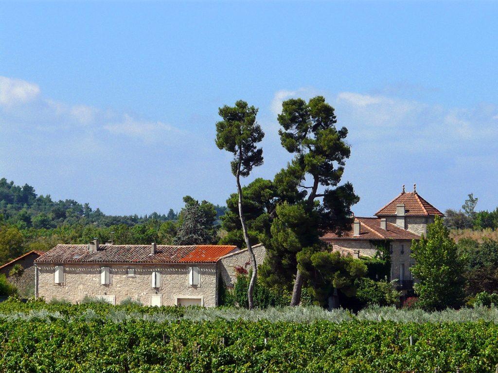 Propriété viticole à vendre de 44 HA - Languedoc - 767LR - fr