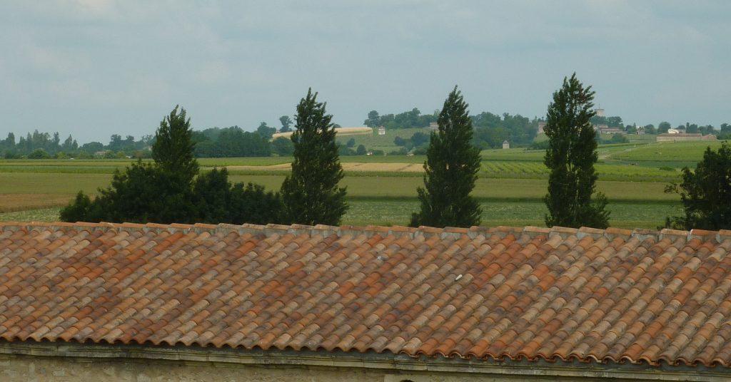 Propriété viticole à vendre de 45 HA - Cognac - 16118 - fr