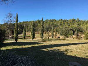 Propriété viticole à vendre de 6 HA - Provence - 599P - fr