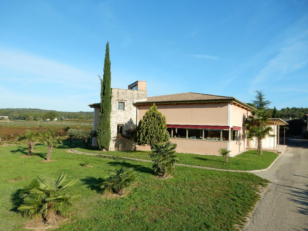 Propriété viticole à vendre de 64 HA - Vallée du Rhone - 2003CDR  - fr