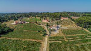 Propriété viticole à vendre de 8 HA - Provence - 618P - fr
