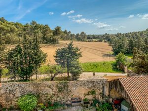 Propriété viticole à vendre de 80 HA - Provence - 742P - fr