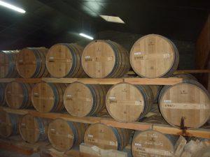Vigne à vendre de 28 HA - Cognac - 16037 - fr