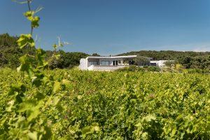 Wine Estates to sell of 10 HA - Vallée du Rhone - 1952CDR - en
