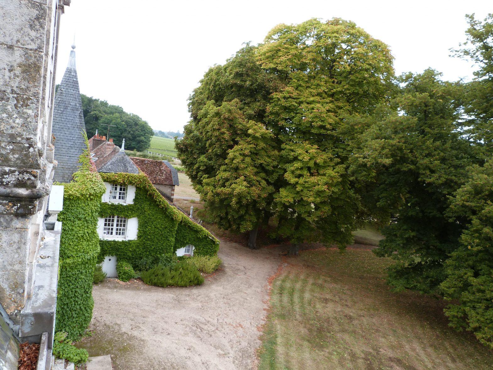 Wine Estates to sell of 12.5 HA - Loire - 18110 - en