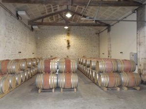 Wine Estates to sell of 20 HA - Bordeaux - 9084 - en