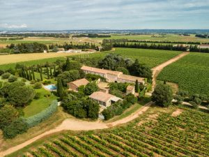 Wine Estates to sell of 20 HA - Languedoc - 1935LR - en