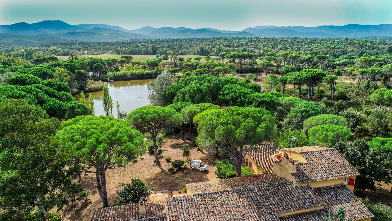 Wine Estates to sell of 3.1 HA - Provence - 633P - en