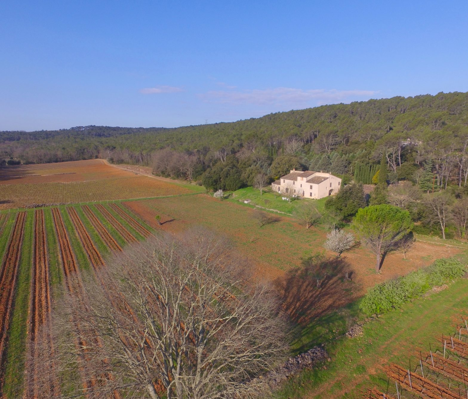 Wine Estates to sell of 30 HA - Provence - 602P - en