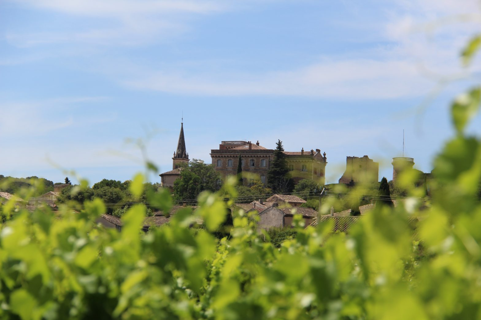 Wine Estates to sell of 90 HA - Vallée du Rhone - 1812CDR  - en