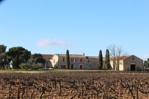 Wine Estates to sell of 94 HA - Languedoc - 1999CDR - en
