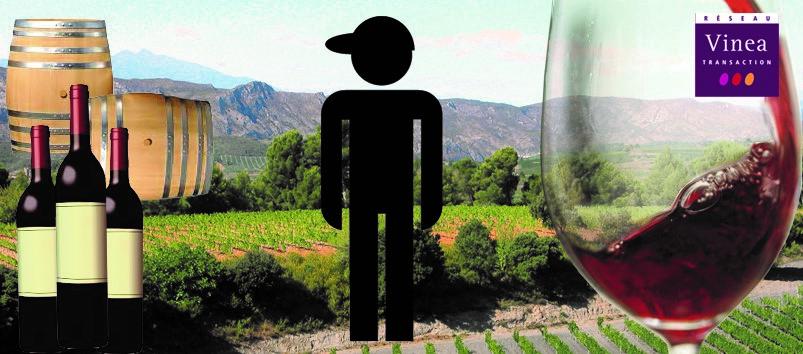 être vigneron ou viticulteur est un métier multicompétence